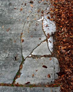 A driveway with cracks adjacent to mulch. Gainesville, Florida.